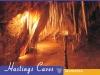 Hastings Caves Tasmania