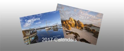 2017 calendars with background