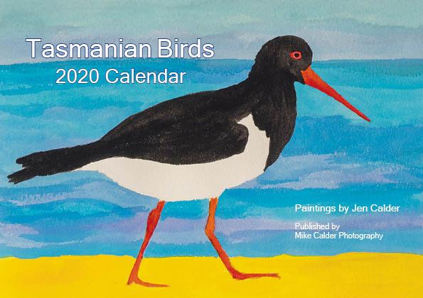 A5 Bird Calendar cover