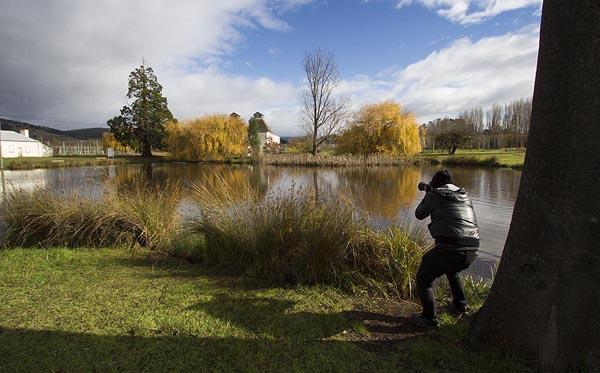 Tasmanian Photography Tour
