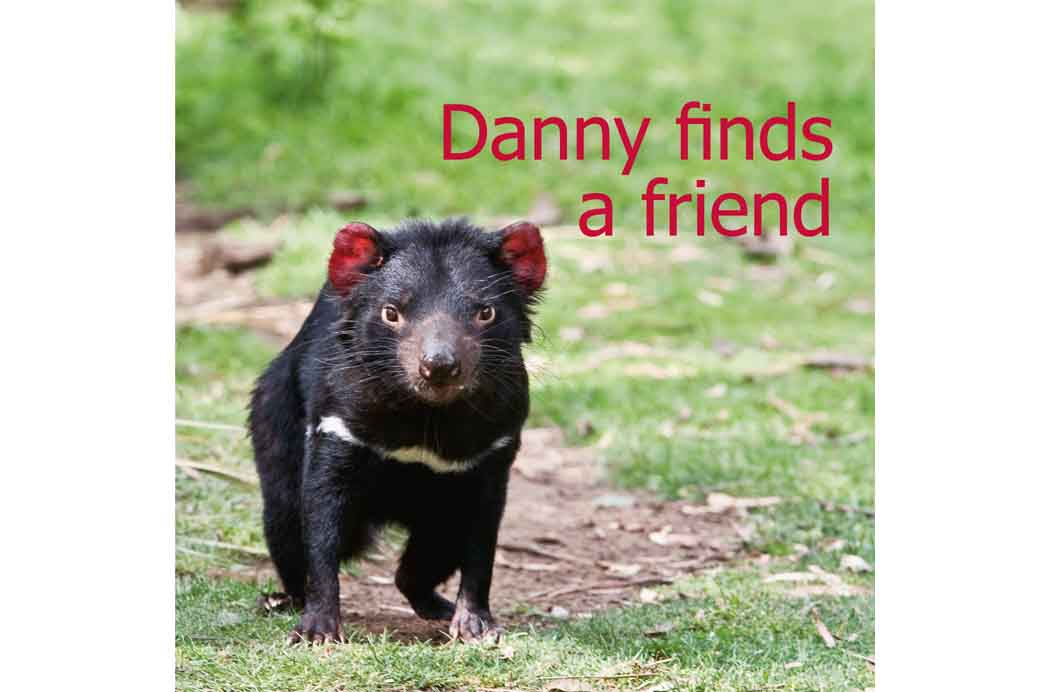 Danny Finds a Friend