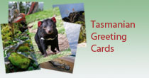Tasmanian Greeting Cards