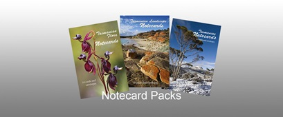 Notecard Packs-sml