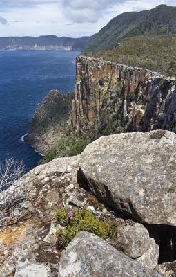Tasman Cliffs
