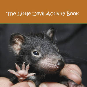 Little Devil Activity Book