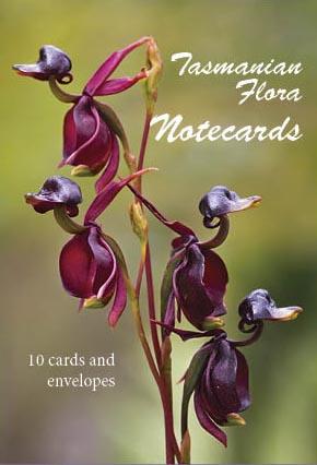 flora front