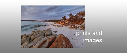 prints and images-sml